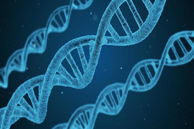 dna-genes-autoimmune-diseases