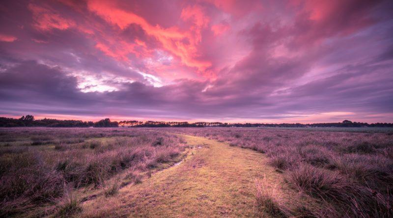 Spiritual voyage concept path through Wild natural landscape und