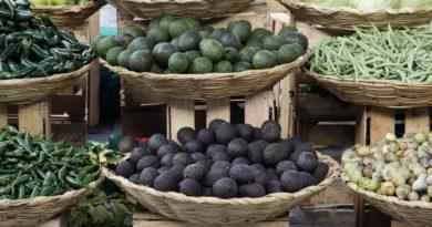 Baskets of Fruits & Vegetables