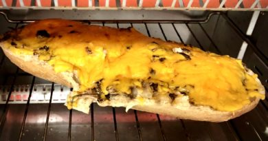 A cheese sandwich in a toaster oven
